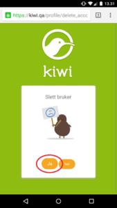 kiwiqa_mobil_5